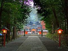 霧島神宮 参道